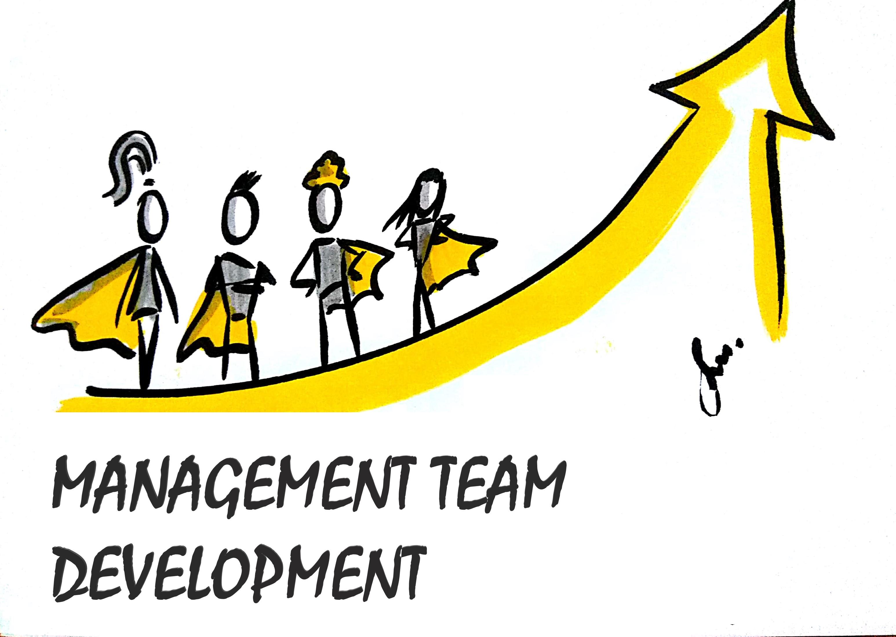 Management Team Development